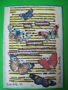 come-le-farfalle2_opt